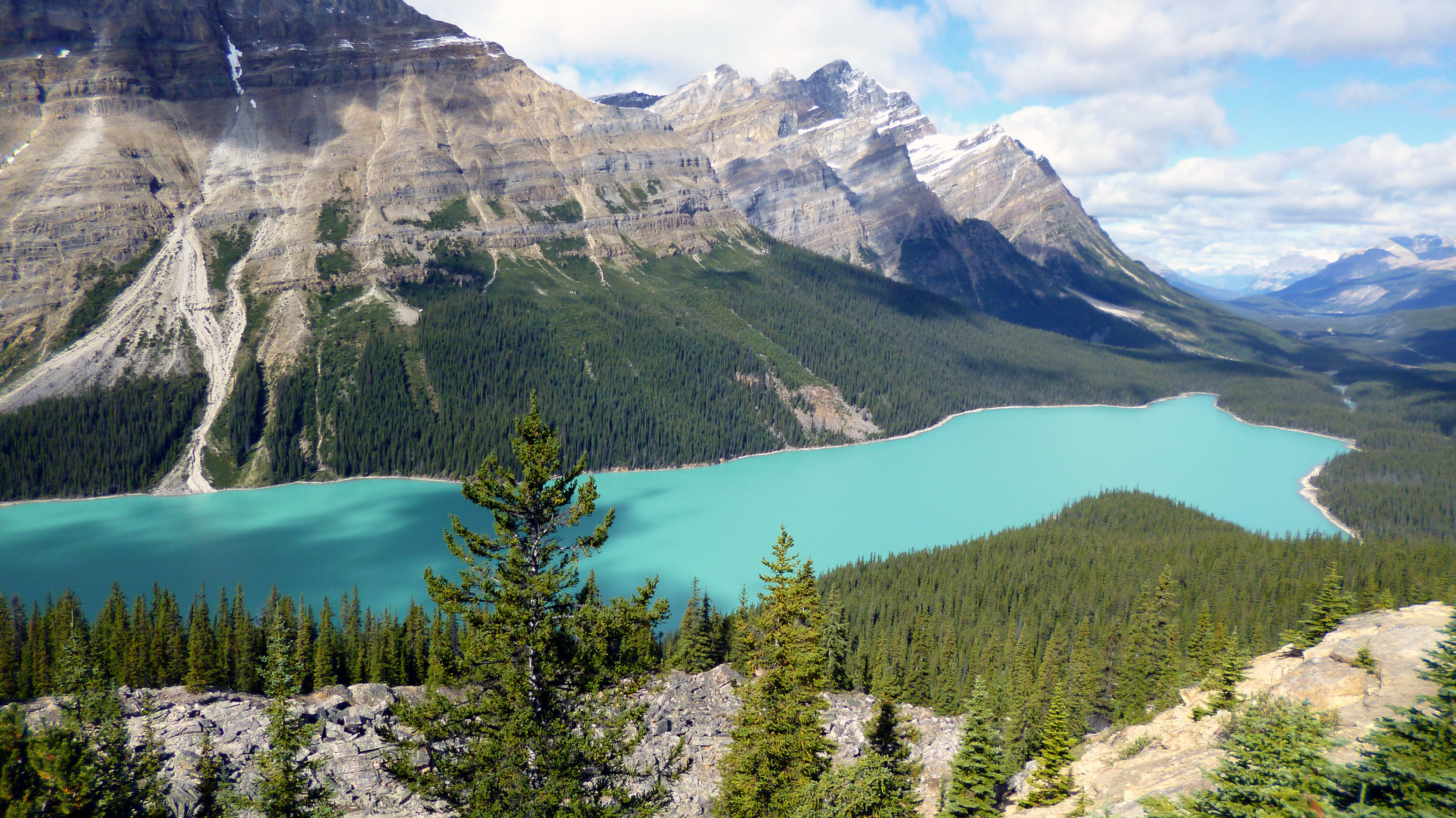 Tag 5 Peyto Lake
